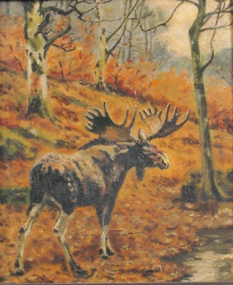 Impressionist Oil Painting Maine Nh Moose Autumn Forest Scene Mystery Artist !!