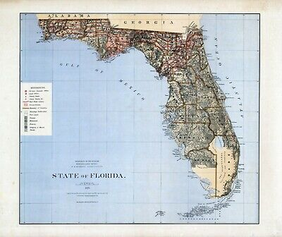 1876 Department Interior MAP State of Florida Geographical political 17