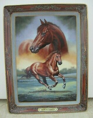 THOROUGHBRED: Portrait of a Champion HORSE Display PLATE certificate & box