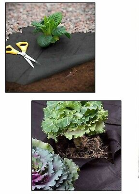 Weed Control Membrane Suppressant Ground Cover Fabric 8m, x 1.5m Landscaping