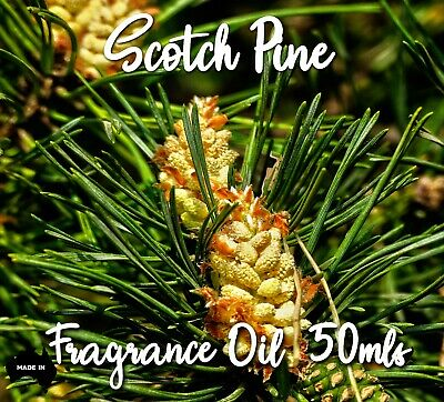 """Top Quality """"scotch Pine"""" Fragrance Oil, 50 Mls - Candles, Melts, Soaps"""