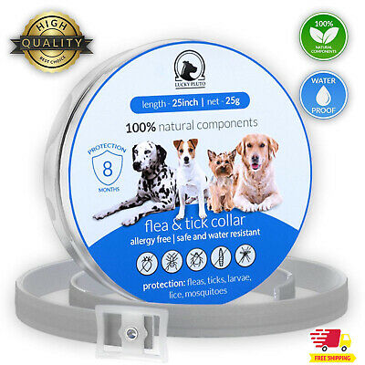 Flea and Tick Collar for Large Dogs protection Prevention 8months Treatment Pet