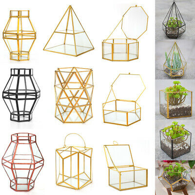 Geometric Shapes Terrarium Flower Pot Window Sill Miniature Bonsai Container Box