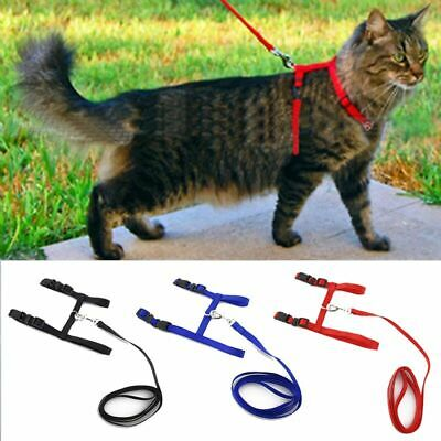 Cat Small Pet Harness with Leash - up to 10 lbs - One Size- Adjustable
