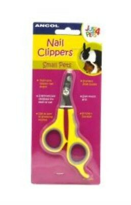 Ancol small animal - Bristle Brush - Slicker Brush - double sided comb- clippers
