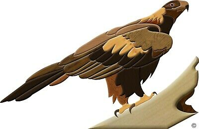 Aussie Intarsia Pattern - Wedge Tail Eagle 02
