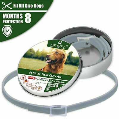 Us Dewel™ Pro Guard Flea And Tick Collar For Dogs | Us Seller