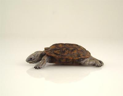 Franz Bergmann Vienna Brass TURTLE Cold Painted Bronze 52mm Austria Bergman