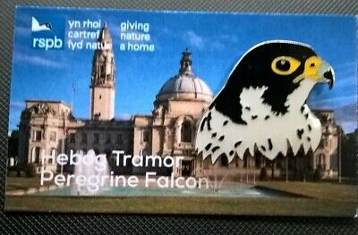 RSPB Pin Badge Peregrines Head. On a VERY RARE WELSH RSPB Card.