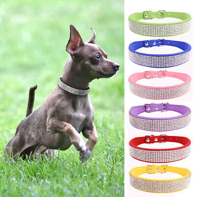 Collars  Collar  Crystal   Fancy Necklace Dog Bling  Dog  Cat   Small  Dog