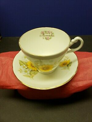 Flowers of the Month Nov. Royal Castle Staffordshire Cup and Saucer FBC