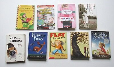Scholastic Chapter Book Lot Of 9 For Young Readers Junie B Jones Flat Stanley ++
