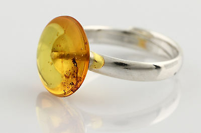 Fossil SPIDER Inclusion Genuine BALTIC AMBER Adjustible Silver Ring r160118-6