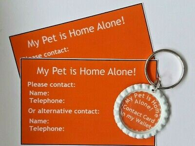 'My Pet Is Home Alone' Keyring & Cards by Curiosity Crafts