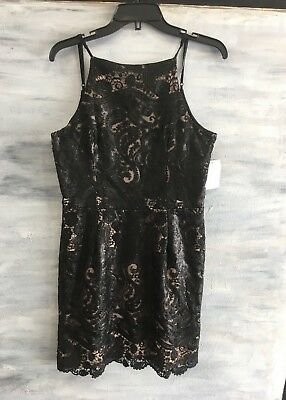 NWOT! DRESS THE POPULTION Lace Sequins Fit & Flare Dress, XL - Black Nude