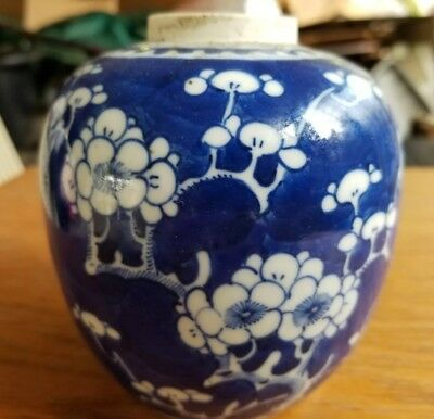 19th Century Chinese VASE Prunus/Hawthorne Kangxi Revival Mid-Late Qing Period