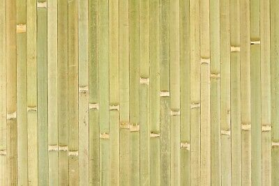 4ft x 8ft Bamboo Wainscoating Paneling Raw Green Great for Tiki Bar