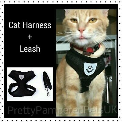 Cat Harness and Leash Set **Small Chihuahua Puppy Dog Lead Teacup