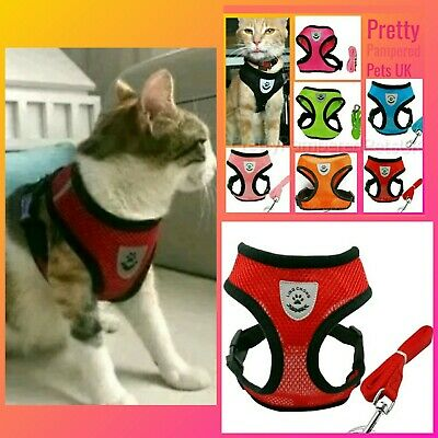 Cat Harness and Leash Lead Starter Set Harness Coat Small Pets RED