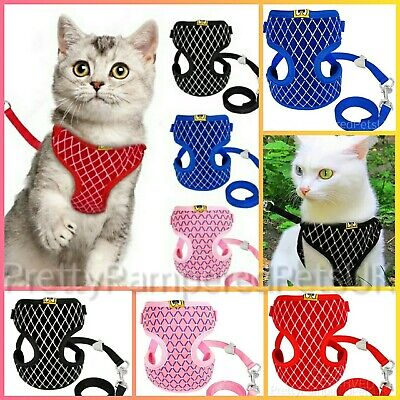 Cat Harness and Leash Starter Set Cats Pets Kitten Puppy Dog Chihuahua Teacup UK