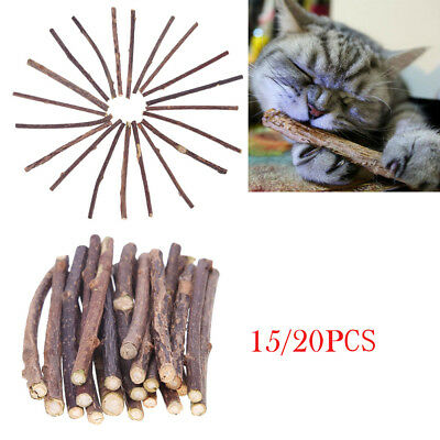 15/20pcs Natural Fruit Matatabi Cat Snacks Sticks Catnip Molar Toothpaste Rod