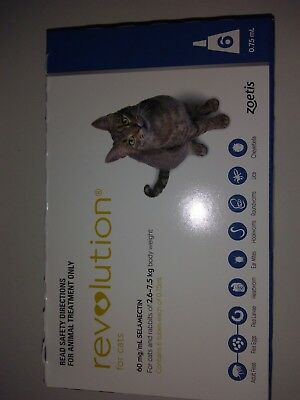NEW Flea and Tick Control for Cats and 2.6-7.5 kg ONE treatment