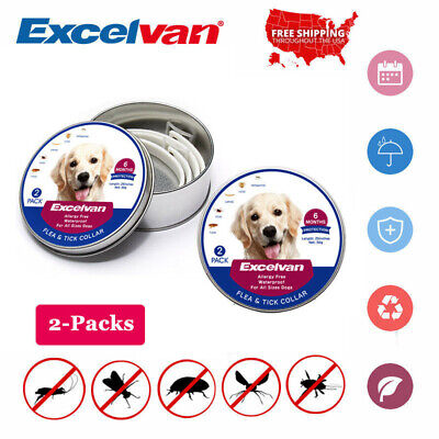 """2X Adjustable Tick&Flea Collar 25"""" Dog Anti Insect Waterproof 6-Month Protection"""