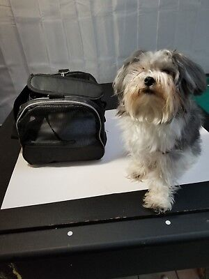 Pet Carrier for a Toy Dog or Small Cat