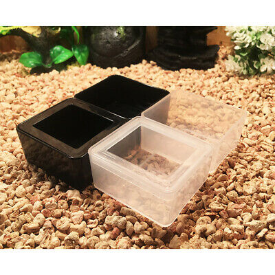 1pc Reptile Bowl Rectangle Plastic Food and Water Bowl for Lizards Spiders Gecko