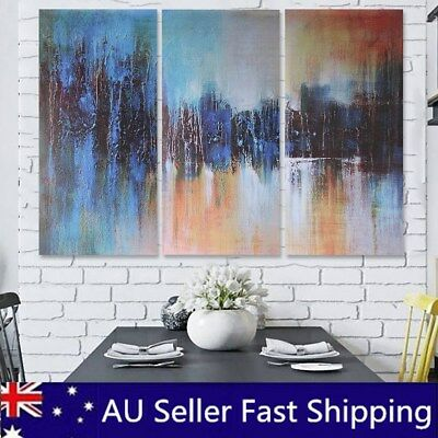 3Pcs Abstract Art Oil Painting Canvas Print Wall Picture Home Room Decor Framed