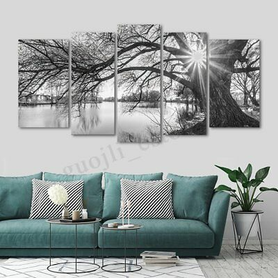 5Pcs Set Tree Modern Canvas Print Painting Wall Art Picture Home Decor Unframed