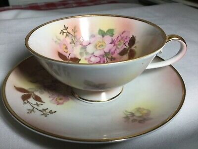 Schumann Auzberg Cup And Saucer.     Germany     Wild Rose Pattern