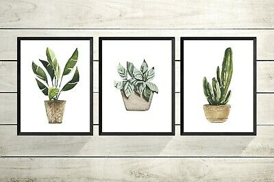 set of 3  Botanical plant print A4 OR A3 Prints -Pictures Living Room Decor
