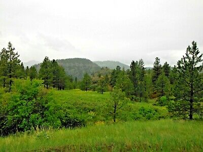 15.32 Acres Deer Born River Cascade Montana Timber Views Surveyed!