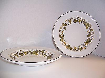 Wedgwood of England Retired Vine (Croft) 2 Rim Soup Bowls Exceptionally NICE