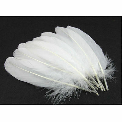White Purifying SMUDGE Feather Wand Ritual Spells Cleansing White Magic 15-20cm