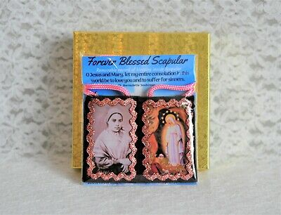 St. Bernadette Our Lady of Lourdes Brown Scapular Prayer, Blessing Record, Medal