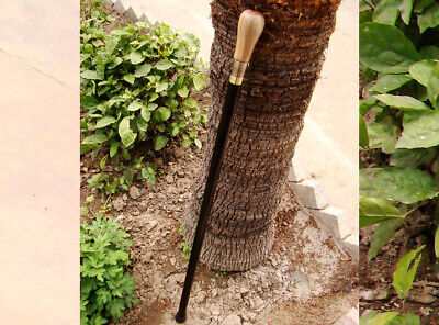 95 Cm Long Gentlemen's Classic Style Design Walking Stick Wooden Handle (Cm-144