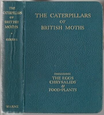 The Caterpillars of the British Moths / Pocket Guide Illus. HC 1948 Lepidoptera
