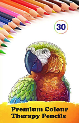 Star Online 30 Professional Colour Therapy Colouring Pencil Crayons Artist