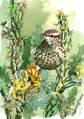 ACEO Limited Edition -Bird amongst cactus, Art print of watercolor, Cactus wren