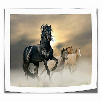 "Pentium Horse Animal Painting HD Print on Canvas Home Decor Wall Art 16""x18"""