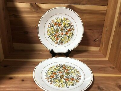 "Corelle by Corning ""Indian Summer"" set of 2 dinner plates pre-owned"