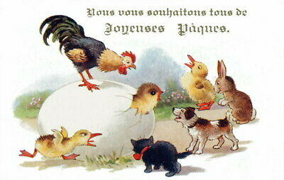 1920s Comique French Easter Fowl~We Wish You All A Happy Easter~ NEW Note Cards
