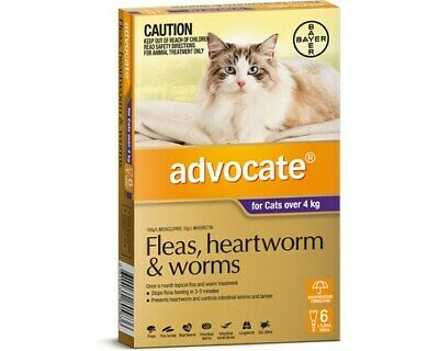 Advocate for Cats Purple Over 4kg 6 Pack Free Post