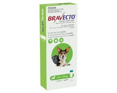 Bravecto Spot On Medium Dog Green 10 - 20kg 1 Pack Free Post
