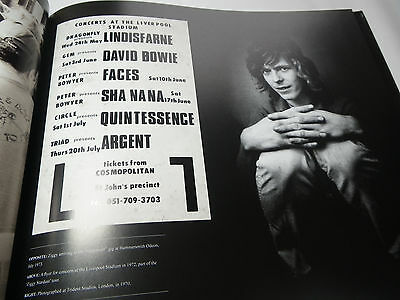 Bowie The Story Of Rock`s Enduring Enigma By Mike Evans