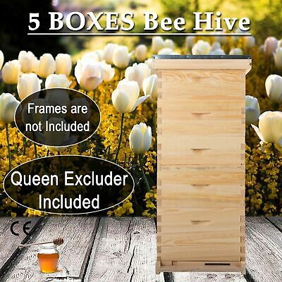 5 Box 10-Frame size Beehive Frames /Bee Hive Frame/ Bee House for Beekeeping rok