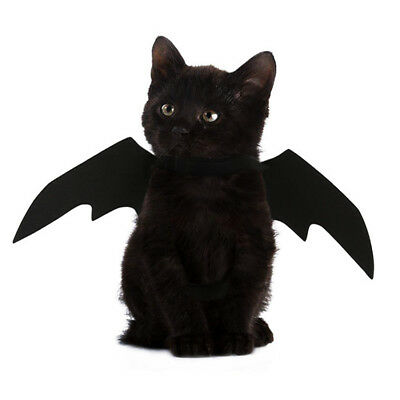 Funny Cats Cosplay Bat Wings Bat Cat Costume Fit Party Halloween Costume Pet Dog