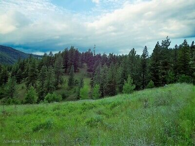 10 Acres Curlew Washington Ferry County Aspen Pine Trees Kettle River Beautiful